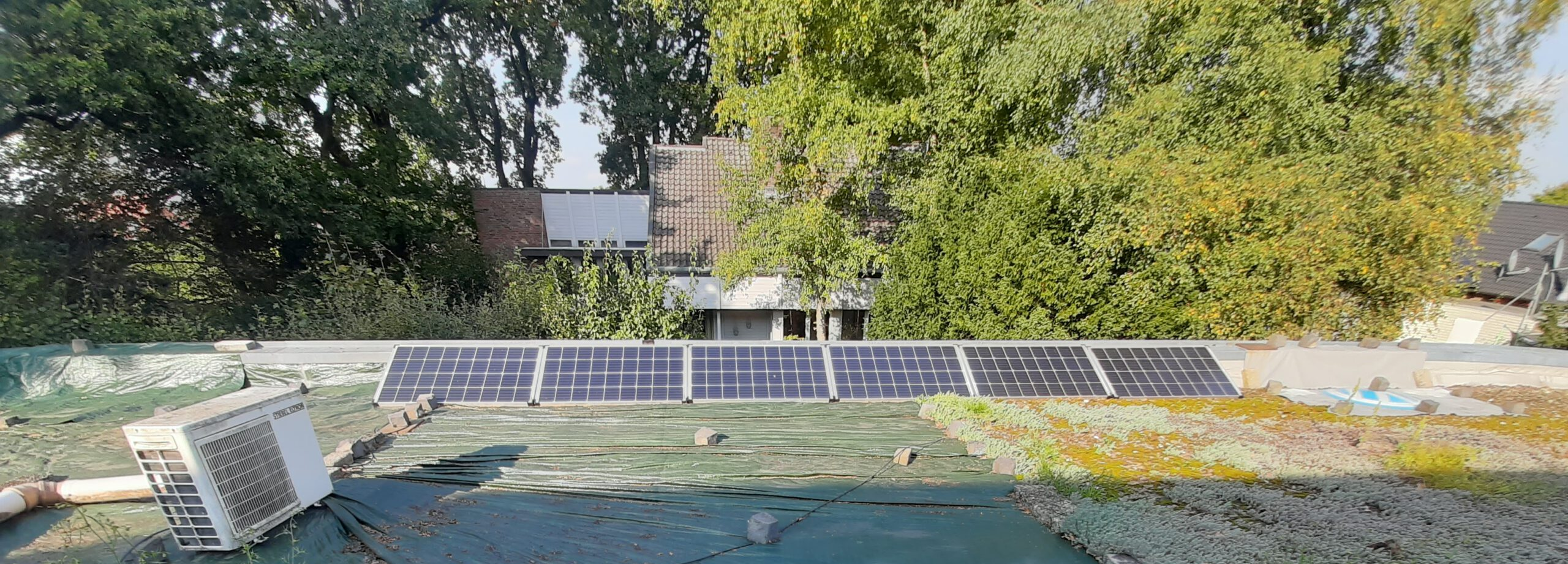 6 monokristalline Solarzellen